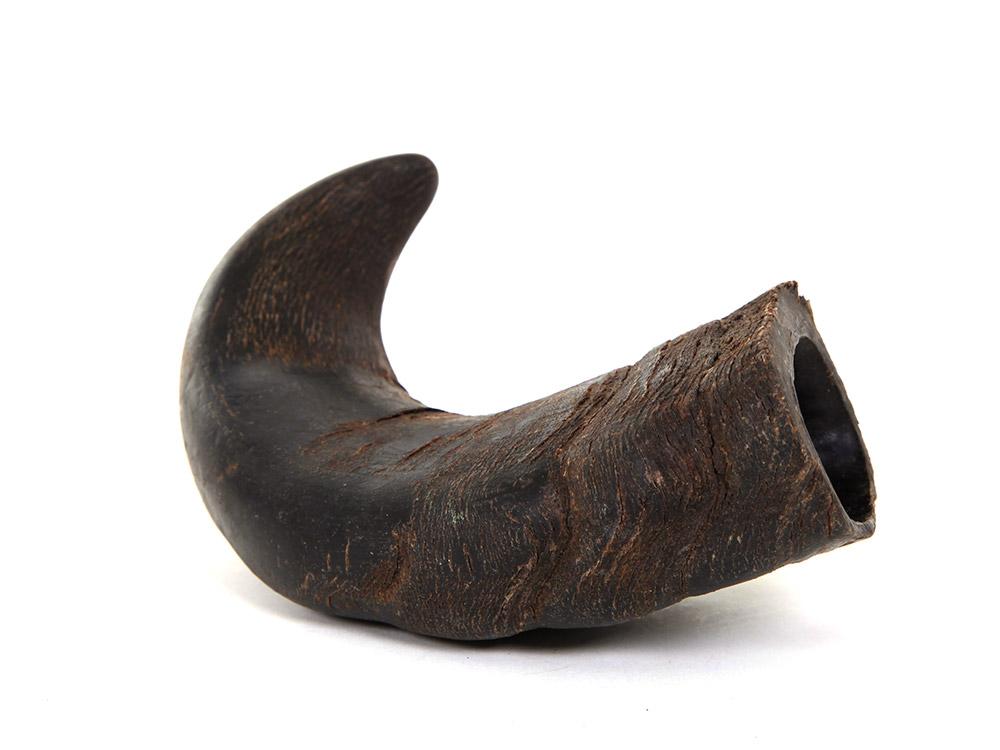Büffel Kauhorn