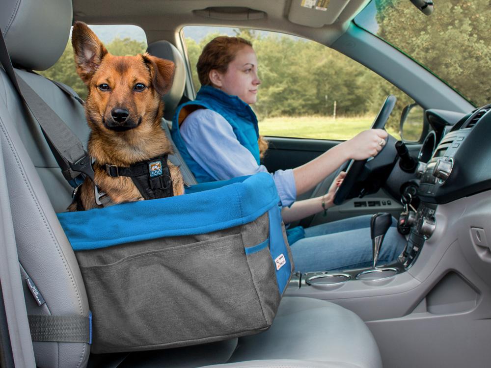 Kurgo Autositz für Hunde Heather Booster Seat grau/blau