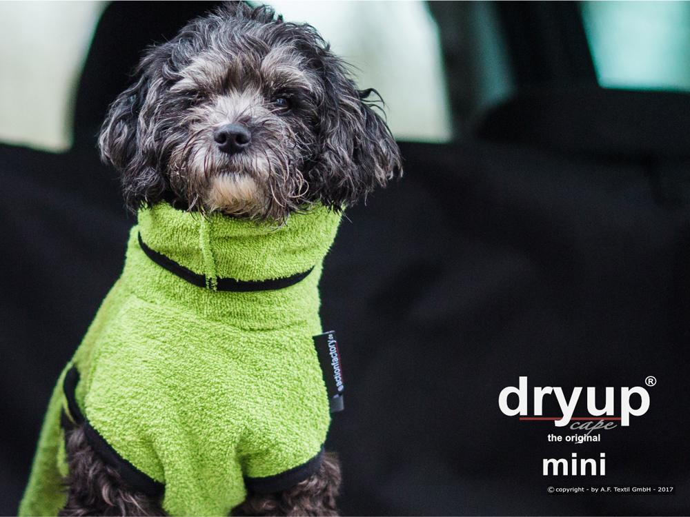 Dryup Cape Hundebademantel Mini kiwi