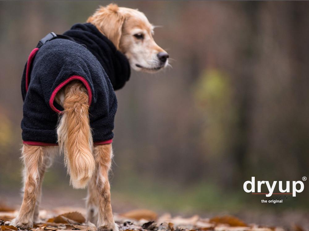 Dryup Cape Hundebademantel schwarz