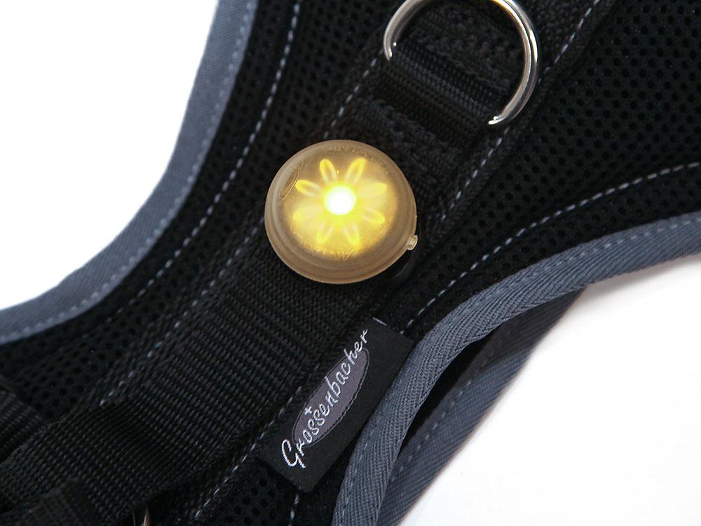 Grossenbacher Fröschli LED Geschirrlicht
