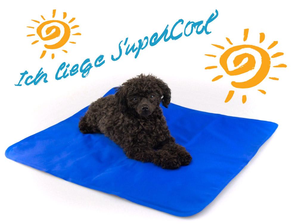 Hunde Kühlmatte SuperCool 110 x 70 cm 110 x 70 cm