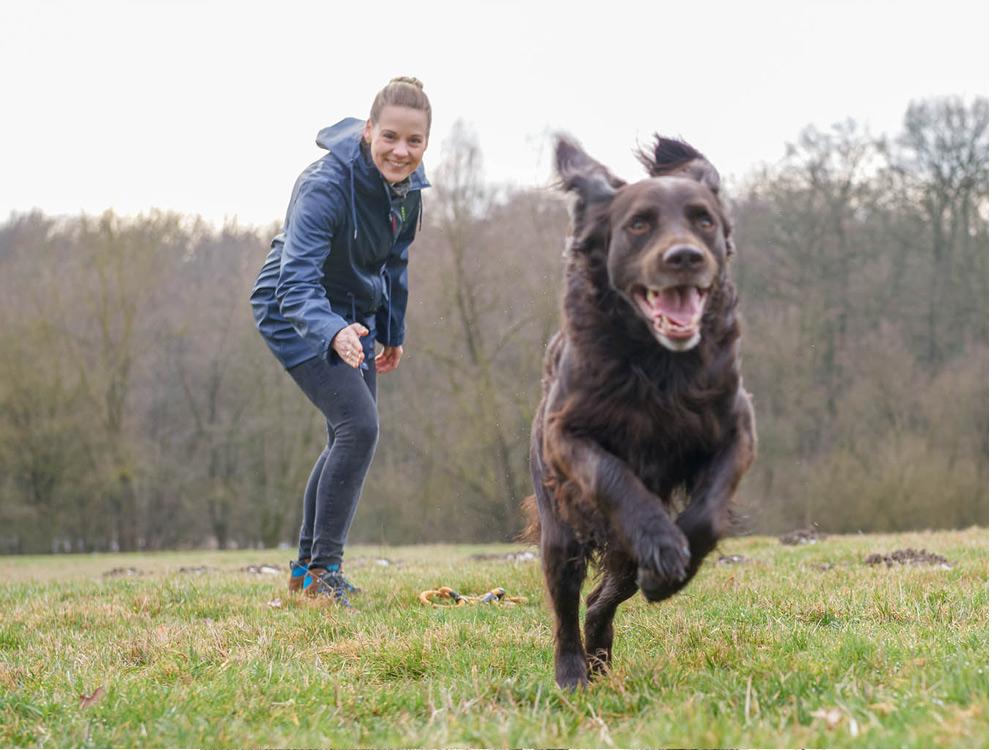 weltweite Auswahl an kaufen Billiger Preis Owney Vela Regenjacke Damen | Hundeshop.de