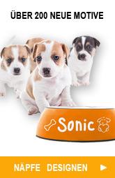 Hundenapf - Die besten Futternäpfe und Napfständer
