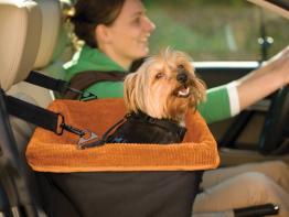Kurgo Autositz für Hunde Skybox Booster