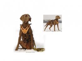 Niggeloh Mantrailing Hundegeschirr