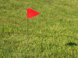 Fährtenschild Fahne rot
