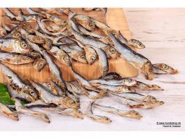Dogfish Sprotten für Hunde 200gr.
