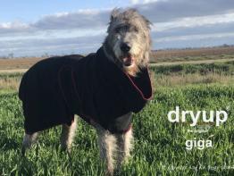Dryup Cape Hundebademantel Giga schwarz