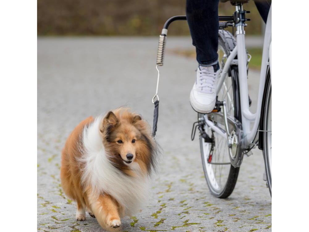 Biker Set de Luxe Fahrradhalter für Hunde