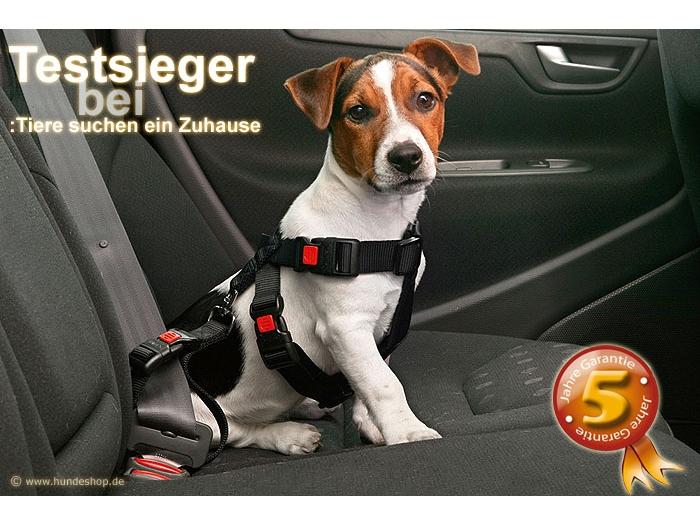 Safety Click Autosicherheitsgurt