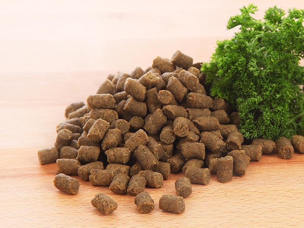 Mini-Trainer Trainingssnack für Hunde mit Pferd