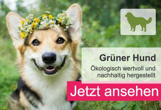 Grüner Hund